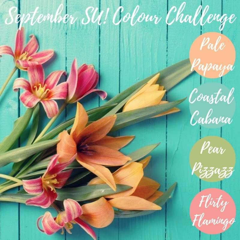 Color graphic showing the colors for the #sucolorchallenge. Coastal Cabana, Pear Pizzazz, Flirty Flamingo, and Pale Papaya